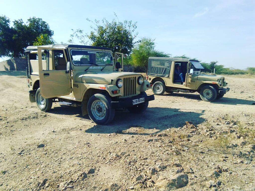 Bishnoi village jeep safari
