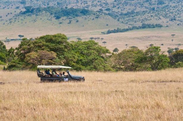 bishnoi village jeep safari